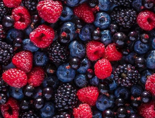 Receita de gelatina vegana com frutas vermelhas