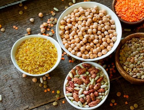 Fontes proteicas fora do lugar comum